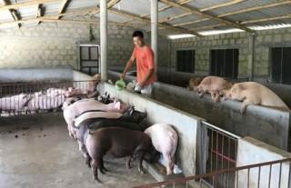 Tín dụng chính sách: Trụ cột giảm nghèo bền vững ở Quảng Trị
