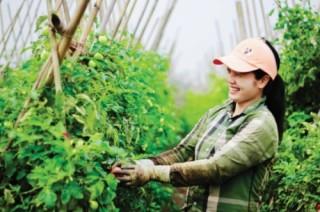 Truy xuất nguồn gốc thực phẩm: Tín hiệu vui cho một thị trường sạch