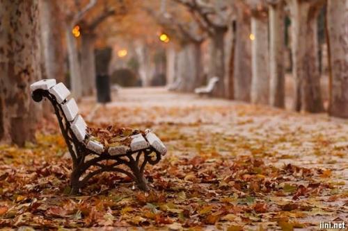 Mùa thu hoài niệm | Văn hóa xã hội