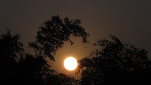 Thương ánh trăng quê