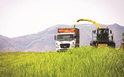 Du lịch hướng vào nông nghiệp bền vững