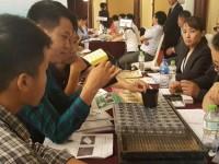 Nội - ngoại hợp công, ngành nông phát triển