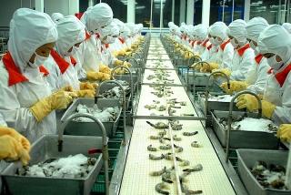 EVFTA - động lực thúc đẩy doanh nghiệp phục hồi nhanh sau đại dịch