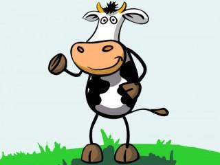 """""""Ngu như bò""""!"""