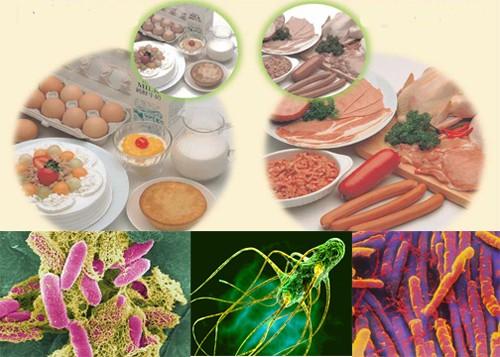 Thực phẩm bị nhiễm bẩn do vi sinh vật cao hơn hóa chất