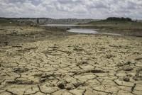El Nino gây thiệt hại lớn cho nông nghiệp