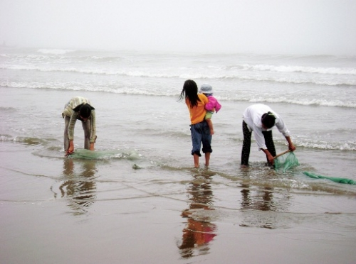 Mỏng manh trước biển