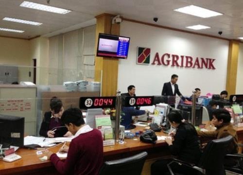 Agribank chung tay vượt bão cùng với khách hàng