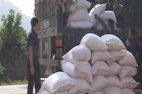 Hỗ trợ 72 tấn gạo cho tỉnh Sơn La