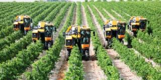 Quy hoạch sản xuất nông nghiệp công nghệ cao