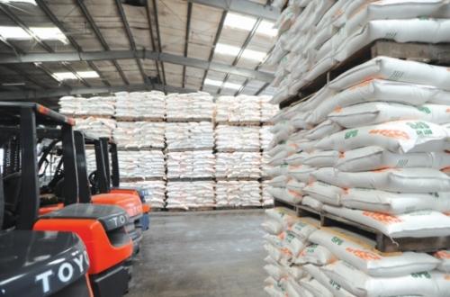 Nâng chất lượng gạo để xuất khẩu bền vững