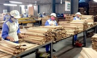 Nhiệm vụ thực hiện Kế hoạch phát triển bền vững DN khu vực tư nhân của ngành Ngân hàng