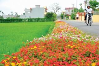 Tín dụng chính sách chung tay xây dựng nông thôn mới