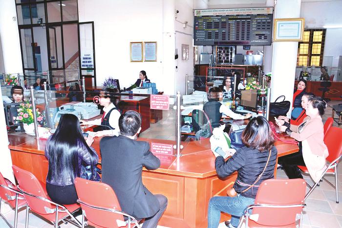 Agribank chi nhánh Lào Cai II: Đảm bảo thanh toán thông suốt cho hàng hóa vùng biên