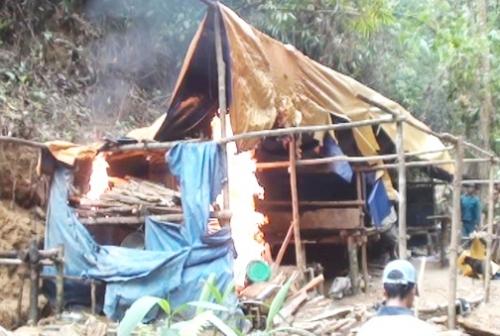 Vàng tặc ở Bồng Miêu