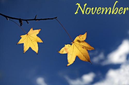 Tháng mười một thì thầm