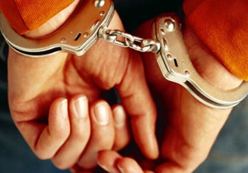 Tội phạm núp bóng DN ngày càng tinh vi