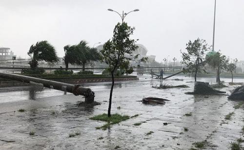 LHQ hỗ trợ hơn 4 triệu USD giúp ứng phó thảm họa thiên tai khẩn cấp ở Việt Nam