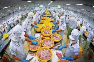 Doanh nghiệp xuất khẩu thủy sản mừng
