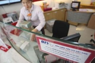 Bảo hiểm tiền gửi Việt Nam: Từ những hạt giống niềm tin