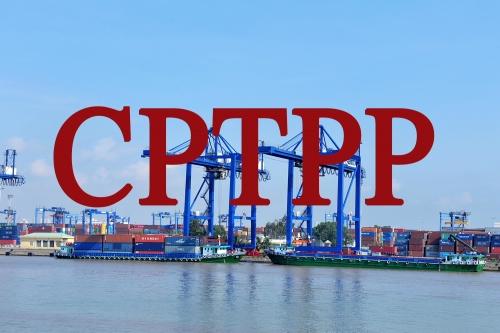 Ngành phân phối - điện tử - logistics: Không lo ngại tác động của CPTPP