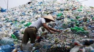 Thu mua rác nhựa để hạn chế xả thải