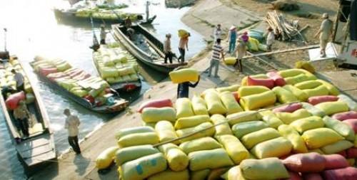 Nông sản Việt Nam: Cần những đột phá trong năm 2016