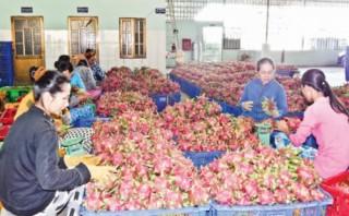 Sản xuất sạch để mở rộng thị trường