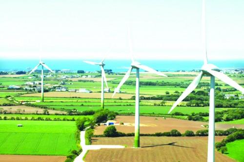Điện gió chùn bước đầu tư
