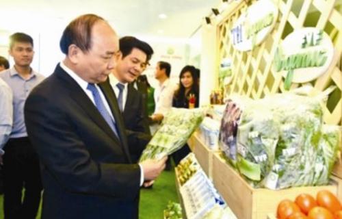 Tăng tốc cùng kinh tế Thái Bình