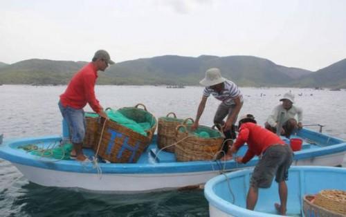 Điểm tựa cho nghề biển