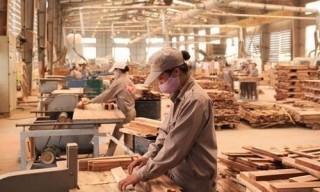 Đồ gỗ trước cửa vào EU, Hoa Kỳ