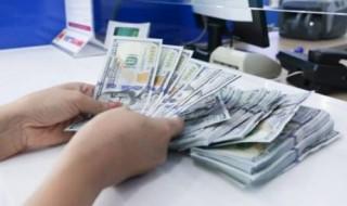 NH quản lý chặt nguồn USD chuyển ra nước ngoài