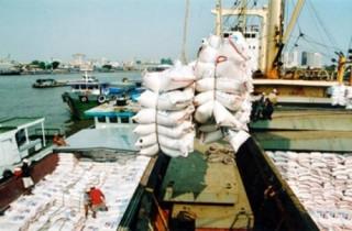 Xuất khẩu gạo trước cơ hội bứt phá