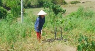 Chuyện thoát nghèo ở Hà Tĩnh