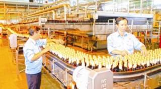 Bán cổ phần bia: Thị trường có thêm hàng hóa tốt