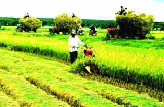 Hoàn thiện chính sách tín dụng tam nông