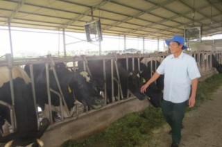 Gỡ khó cho nông nghiệp Hà Nam