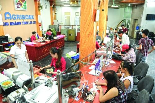 Agribank Lào Cai - đột phá trong phát triển sản phẩm dịch vụ