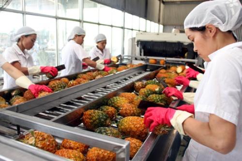 Gọi vốn vào công nghiệp chế biến thực phẩm