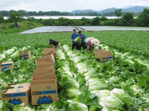 Công nghiệp thực phẩm: Đầu tư vào Việt Nam để vươn ra toàn cầu